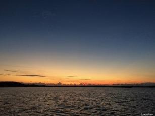 Red Shanks sunset