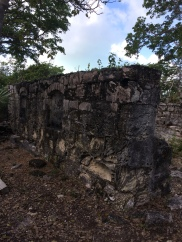 Red Shanks ruins