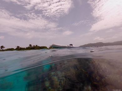 GuanajaSnorkeling1
