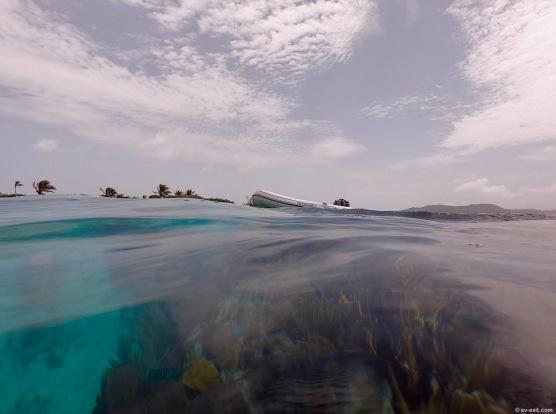 GuanajaSnorkeling3